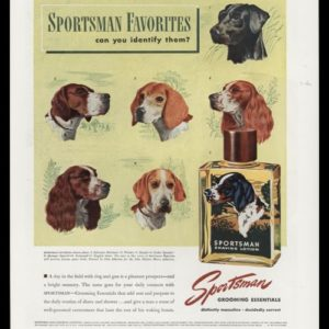 1947 Sportsman Shaving Lotion Vintage Print Ad - Sporting Dogs Art