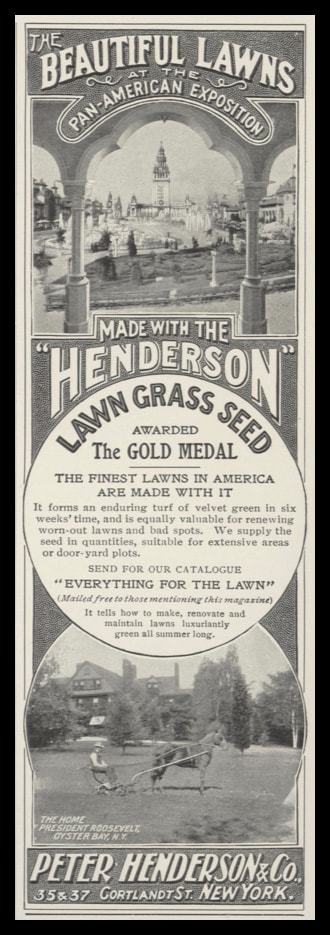 1902 Peter Henderson & Co. Grass Seed Vintage Ad - Roosevelt Home