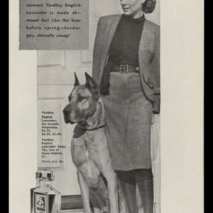 1946 Yardley English Lavender Vintage Ad | Great Dane