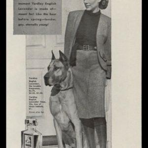 1946 Yardley English Lavender Vintage Ad | Great Dane