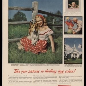 1948 ANSCO Color Film Vintage Ad | Collie Dog