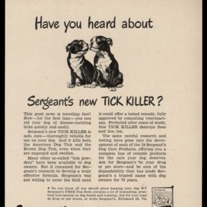 1948 Sergeant's Tick Killer Vintage Ad | Boston Terriers