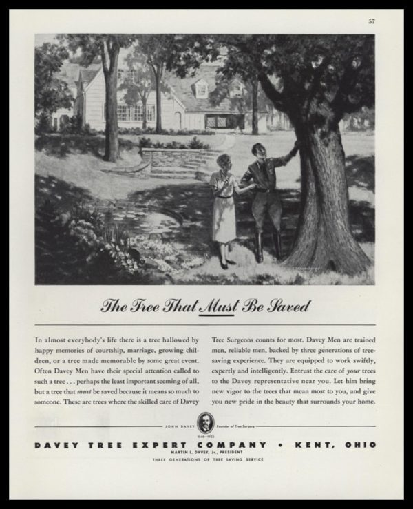 "1947 Davey Tree Expert Co. Vintage Ad - ""The Tree That Must Be Saved"""